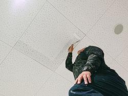 天井のカビ清掃及び防カビ剤コーティング