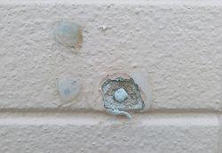 外壁の補修を行いました【アフターメンテナンス】
