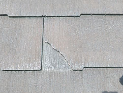 屋根の補修を行いました