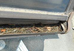 テラスの樋の詰りの解消